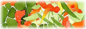 banner flower cards