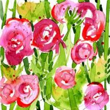 1 Ranunculus