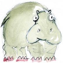 12 hippo