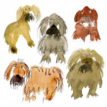 15 Shaggy Dogs