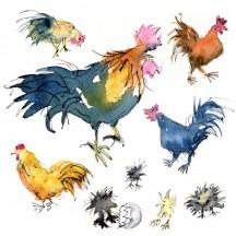 2 Chickens 08