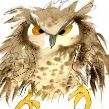 269 Eagle Owl