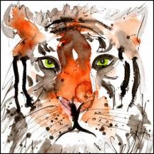 296A Tiger